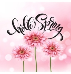 Gerbera Flower Background and Hello Spring vector