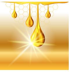 Golden oil drops shiny sparkles vector