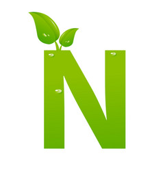 green eco letter n illiustration vector image