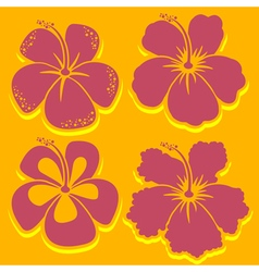 Hibiscus Collection in red vector image