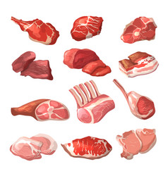 Lamb pork beef and other meat pictures in vector