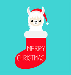 merry christmas llama alpaca baby face in red vector image