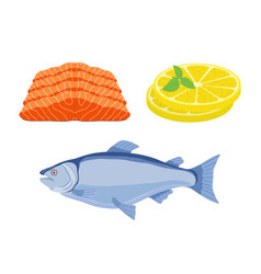 salmon fish slices of lemon - gourmet meal vector image