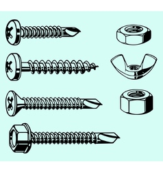 Screws and nuts vector image