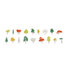 Set deciduous and evergreen forest plants vector