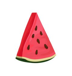 triangle slice of juicy watermelon tasty summer vector image