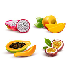Tropical fruits realistic set vector