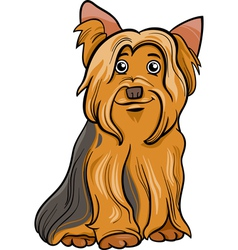 yorkshire terrier dog cartoon vector image
