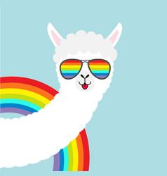 Alpaca llama animal face in rainbow glassess cute vector