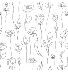 flower linear simpless backgroun roses vector image