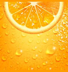 Refreshing orange on a background orange peel vector