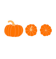 set of pumpkins pumpkin top view bottom view vector image
