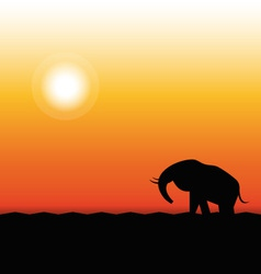 Silhouette of Elephant Standing in the Sunset vector