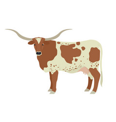Texas longhorn cow breeds domestic cattle flat vector