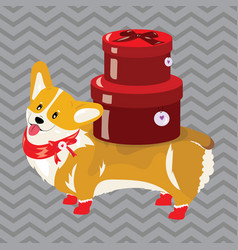 cartoon dog with a christmas present the symbol vector image