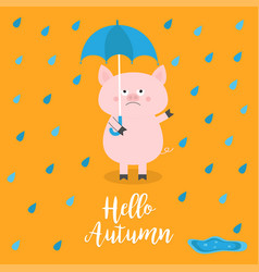 hello autumn pig holding blue umbrella rain drops vector image
