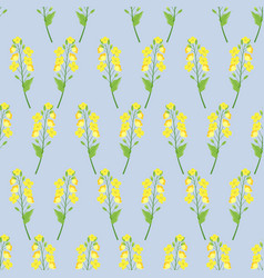 seamless rape plant pattern vector image