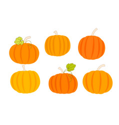 set of orange pumpkins autumn harvest of vector image