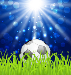 Soccer ball on green grass with shine effect vector