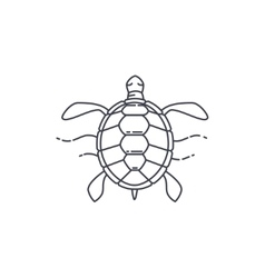 Turtle line icon vector