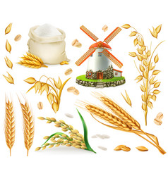 wheat rice oats barley flour mill grain 3d vector image