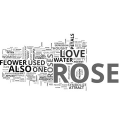 a rose is not just a rose text word cloud concept vector image