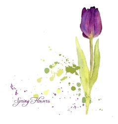 Card with watercolor tulip vector