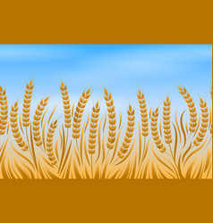 field of wheat landscape background vector image