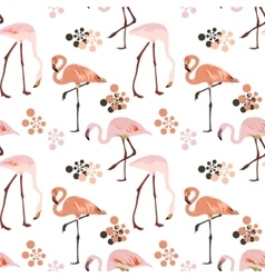 Flamingo bird seamless pattern background vector image