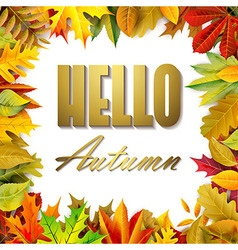 Autumnal composition vector image