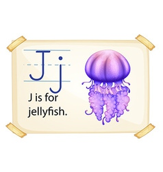 A letter J for jellyfish vector