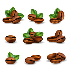 Coffee beans realistic set vector