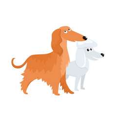 Cute funny dog characters - long haired afghan vector