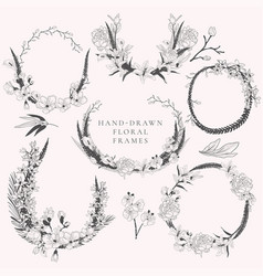 hand drawn wreaths with florals and plants vector image