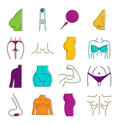 Human body icon set color outline style vector