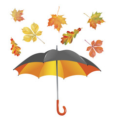 open umbrella and leaf fall isolated on white vector image