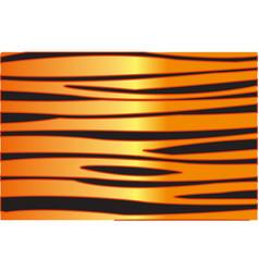 Skin animal tiger vector