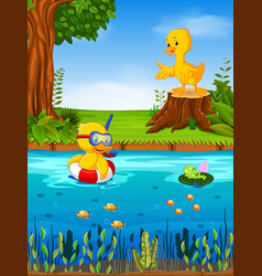Two duck and frog in the river vector
