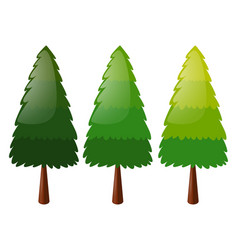 Tree in three colors vector