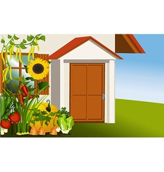 Vegetable garden vector image vector image