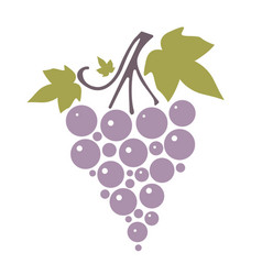Icon silhouette of grapes with leaves on white vector