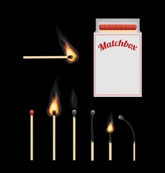 match and matchbox vector image