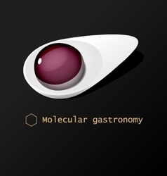 Molecular food ball on white spoon vector image