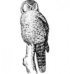 Owl sketch vector