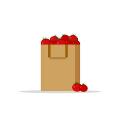 paper bag package with fresh red tomatoes vector image