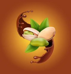 Pistachio realistic nuts in chocolate splash vector