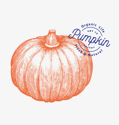 Pumpkin hand drawn vegetable engraved style vector