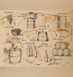 Wine production scheme vector image