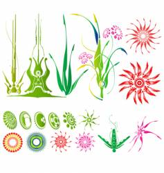 abstarct plants vector image