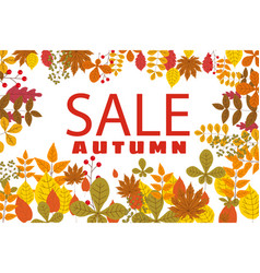 banner for autumn sale background with falling vector image